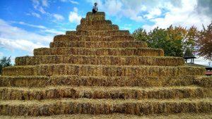 Cercare un ago in un pagliaio e trovare la figlia del contadino !